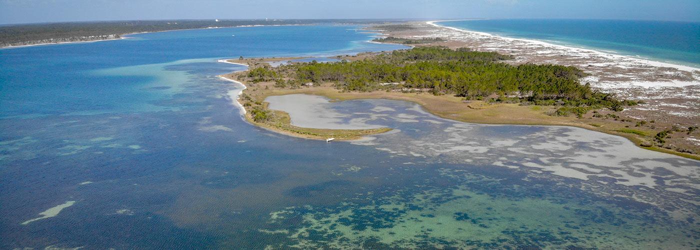 Shell Island Eco Paddleboard Excursion