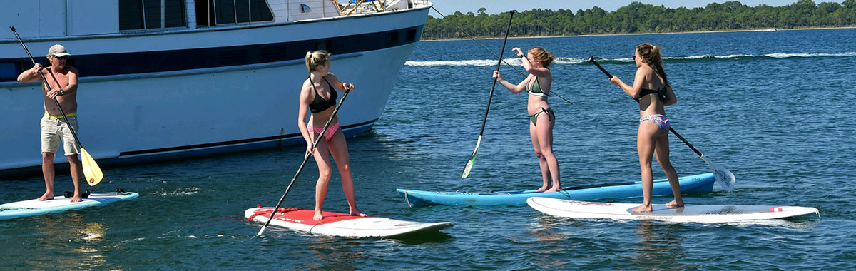 Shell Island Paddleboard Tour