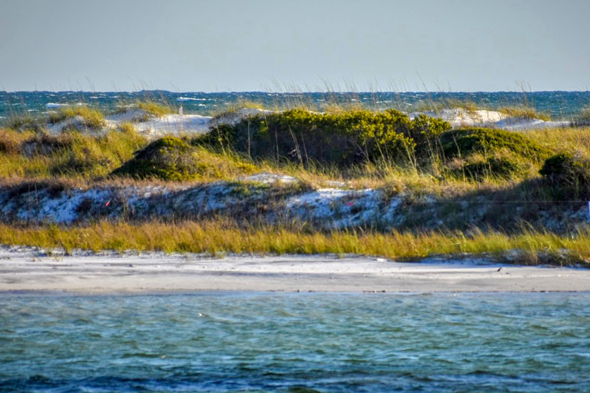 Shell Island Florida